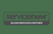 ServiceNowSilver